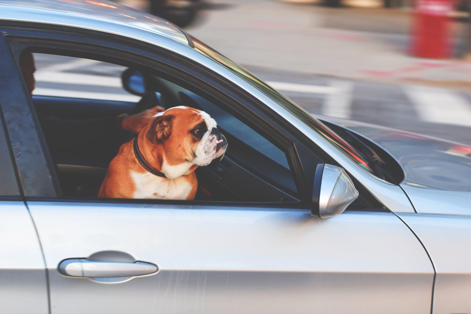 driving-in-spain